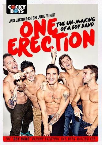 one-erection-gay-parody-dvd-cockyboys