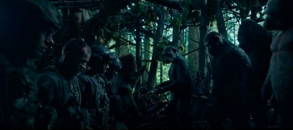 war-apes-captives-war-for-the-planet-of-the-apes