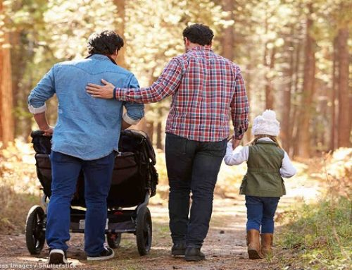 Gay Couples File Lawsuit Against Michigan Over Limits to Adopt Children