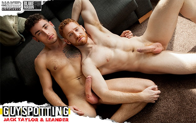 gay orgy wild