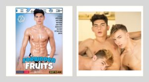 gay porn DVDs New Releases