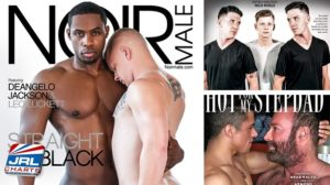 Gay Adult DVD New Releases 090418