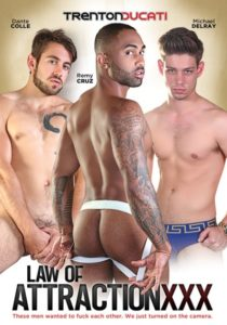 Law Attraction XXX - DVD - gay porn - Trenton-Ducati