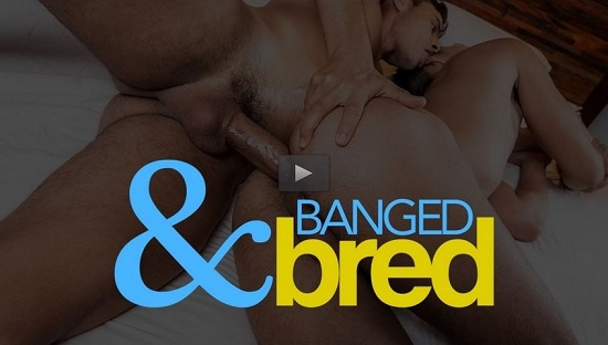 Banged & Bred DVD Movie Trailer NSFW - Lucas Entertainment 2019