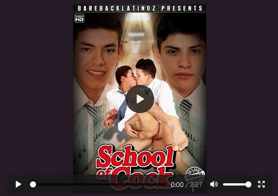 School of Cock DVD movie trailer - gay porn