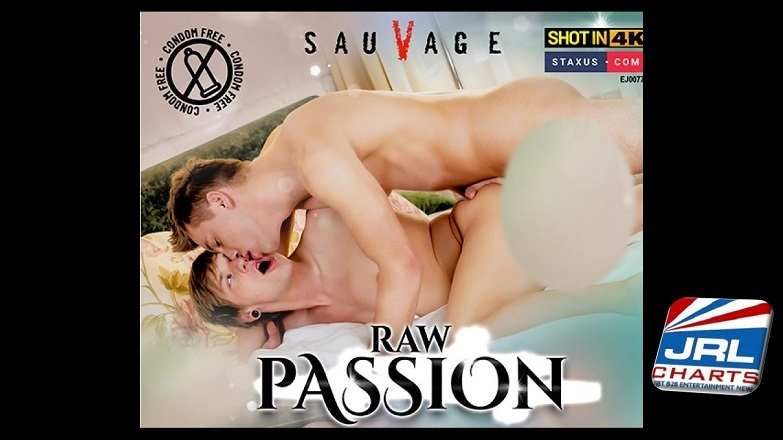 Raw Passion DVD - Ayro Ventura, Jacob Dolce, Lior Hod-SauVage-Staxus