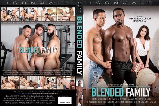 Blended Family DVD-Icon-Male-Studios-Mile-High-Media