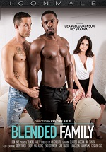 Blended Family DVD