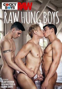 Raw Hung Boys DVD-CockyBoys-Raw