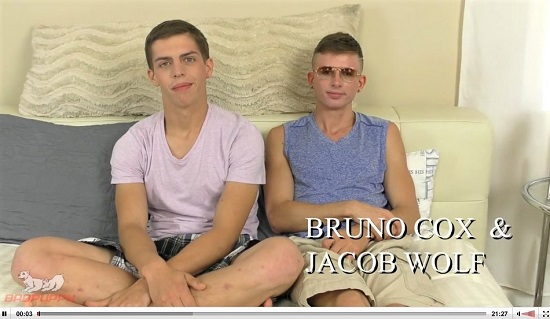 free gay porn - Bruno and Jacob-Gay-porn-trailer-Badpuppy