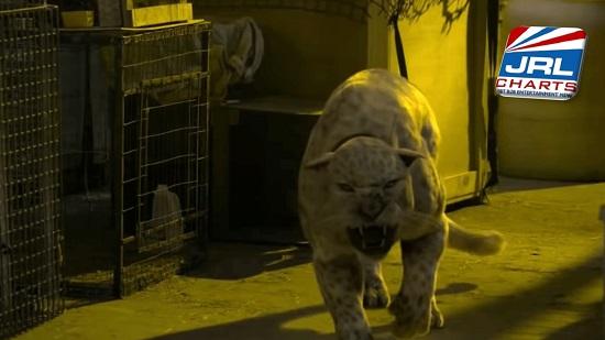 Primal (2019) Lionsgate Home Entertainment