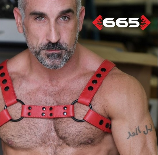 Streamline Bulldog Flame Red Harness by 665 Leather