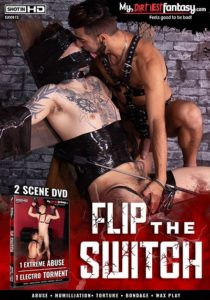 gay bdsm porn movies - Flip the Switch DVD - My Dirtiest Fantasy
