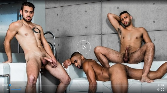 Hard at Work 4 DVD - NSFW Teaser Trailer - NoirMale