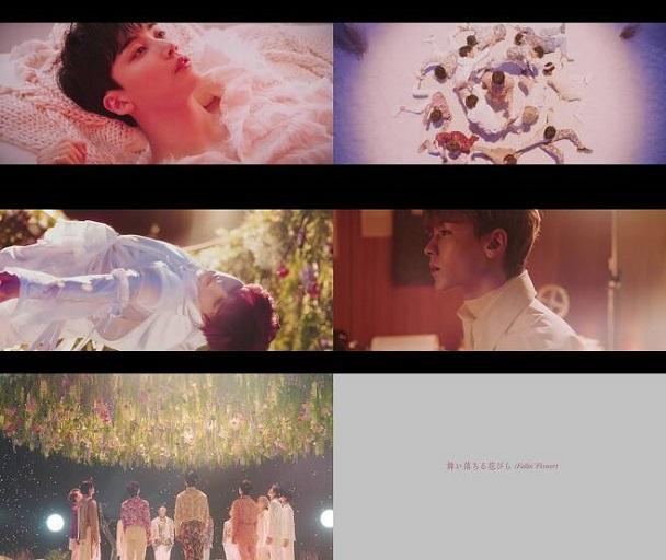 SEVENTEEN-Fallin Flower-MV-Pedis-Japan