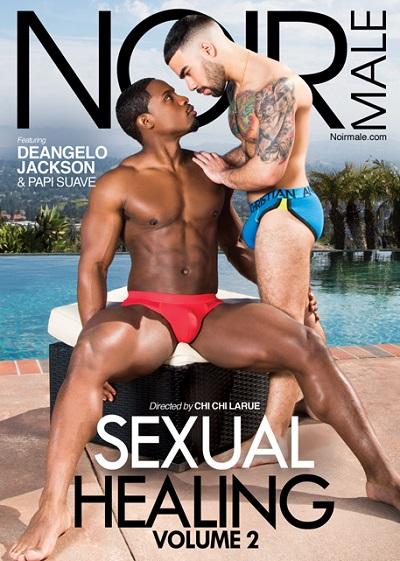 Sexual Healing-Vol-2-DVD-NoirMale-MHM