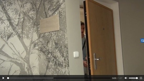 BelAmi-Roald-and-Bastian-gay-porn-scene-trailer