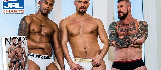 Straight to Black 4 DVD Now Shipping Worldwide-Noir-Male-jrl-charts-2020-09-02
