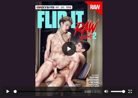 Flip It Raw 2 DVD - gay-porn-movie-trailer-CockyBoys