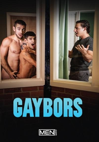 GAYBOR-dvd-mendotcom-pulse-distribution-front-cover