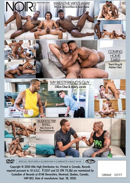 Cheating Men-DVD-back-cover-Noir Male Studios