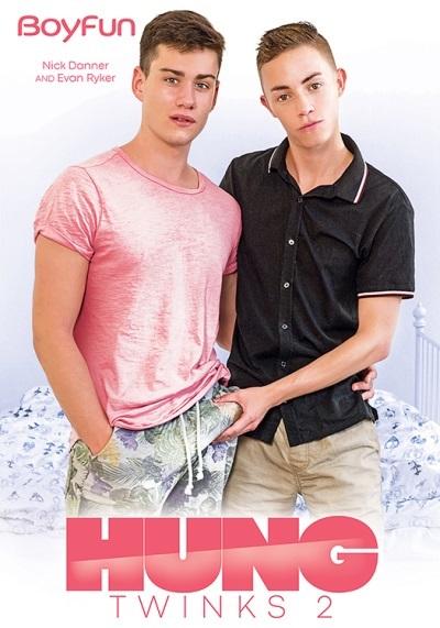 Hung Twinks 2 DVD-front-cover-BoyFun-2020