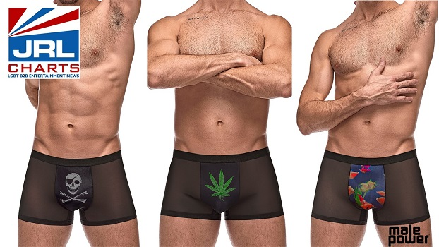 Male Power Apparel-Release its 'Picture Perfect Underwear' Line-2020-12-04-jrl-charts