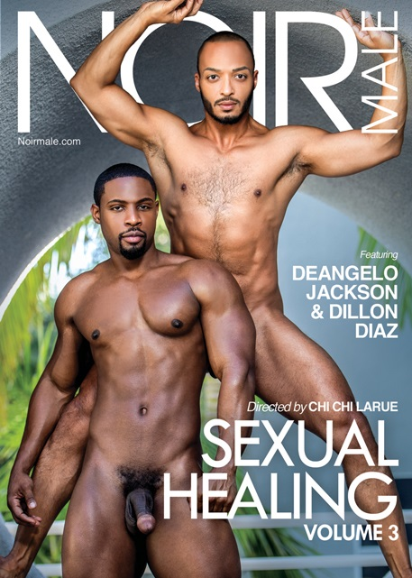 Sexual Healing Volume 3 DVD-Noir-Male-gay-porn