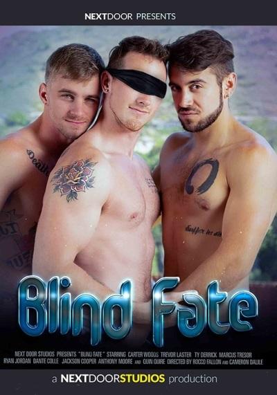 Blind Fate DVD - front cover-Next-Door-Studios
