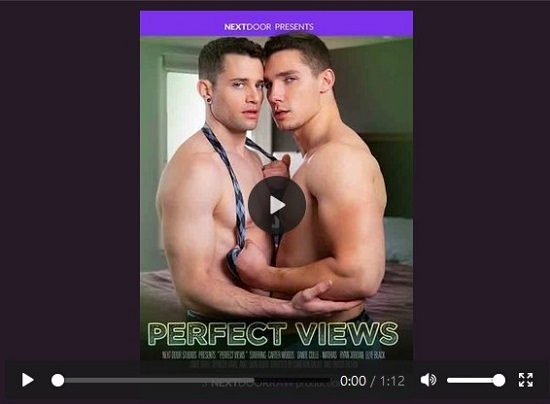 Perfect Views-DVD-Official NSFW Trailer-Next-Door-Studios