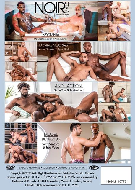Top Models DVD-back-cover-NoirMale-Mile High Media