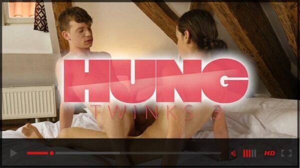 BoyFun Studios-Hung Twinks 3 DVD-NSFW-Trailer