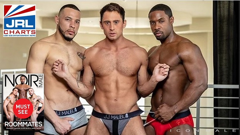 Icon Male - The Roommates (2021) Coming Soon on DVD-Mile High Media-JRL-CHARTS