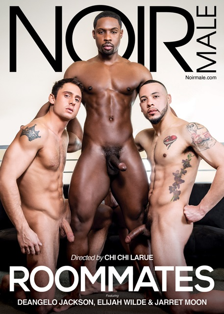 The Roommates DVD front Cover-Noir Male