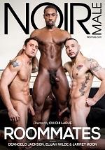 Roommates DVD - Noir Male