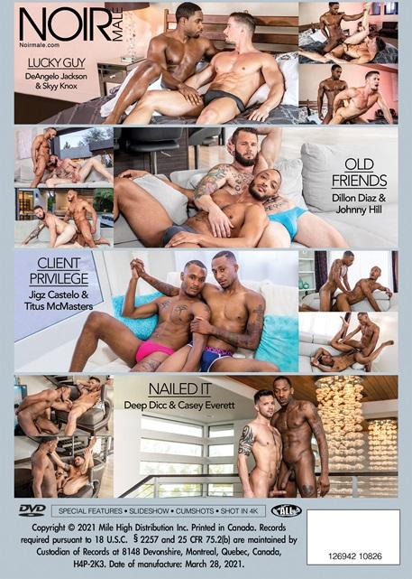 Sexual Healing Volume 4 DVD backcover - Noir Male-Mile High Media
