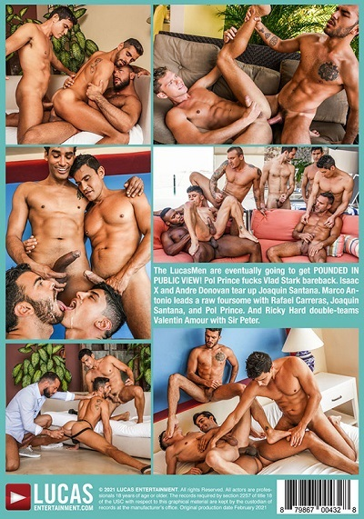 pounded-in-public-view-dvd_back