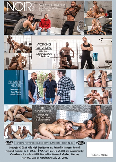 Gay-Threesomes-DVD-back-cover-NoirMale-Mile High Media