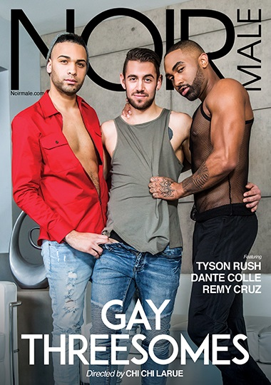 Gay Threesomes DVD-front-cover-NoirMale