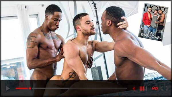 Noir Male-Gay Threesomes DVD-Official Trailer-Mile High Media-2021-09-22-JRL-CHARTS